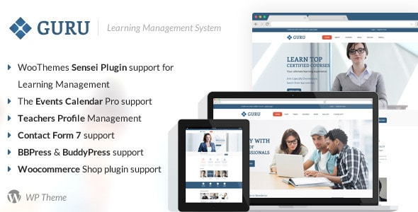 guru-wp-preview2.__large_preview