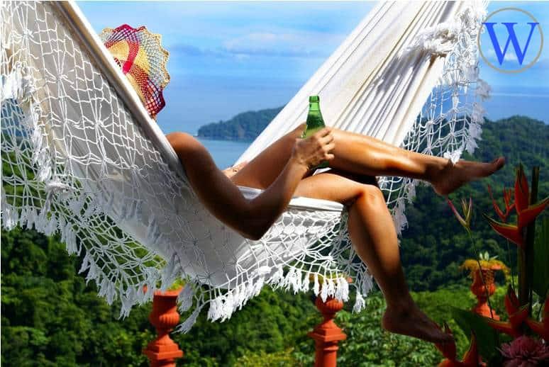 Best Travel Agency WordPress Theme